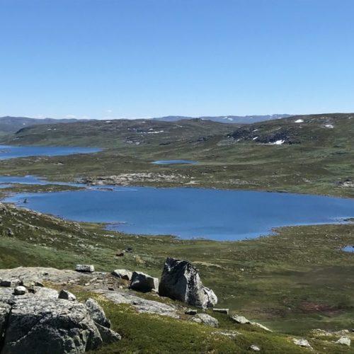 Utsyn over Hardangervidda nasjonalpark med vatn og fjell. Foto.