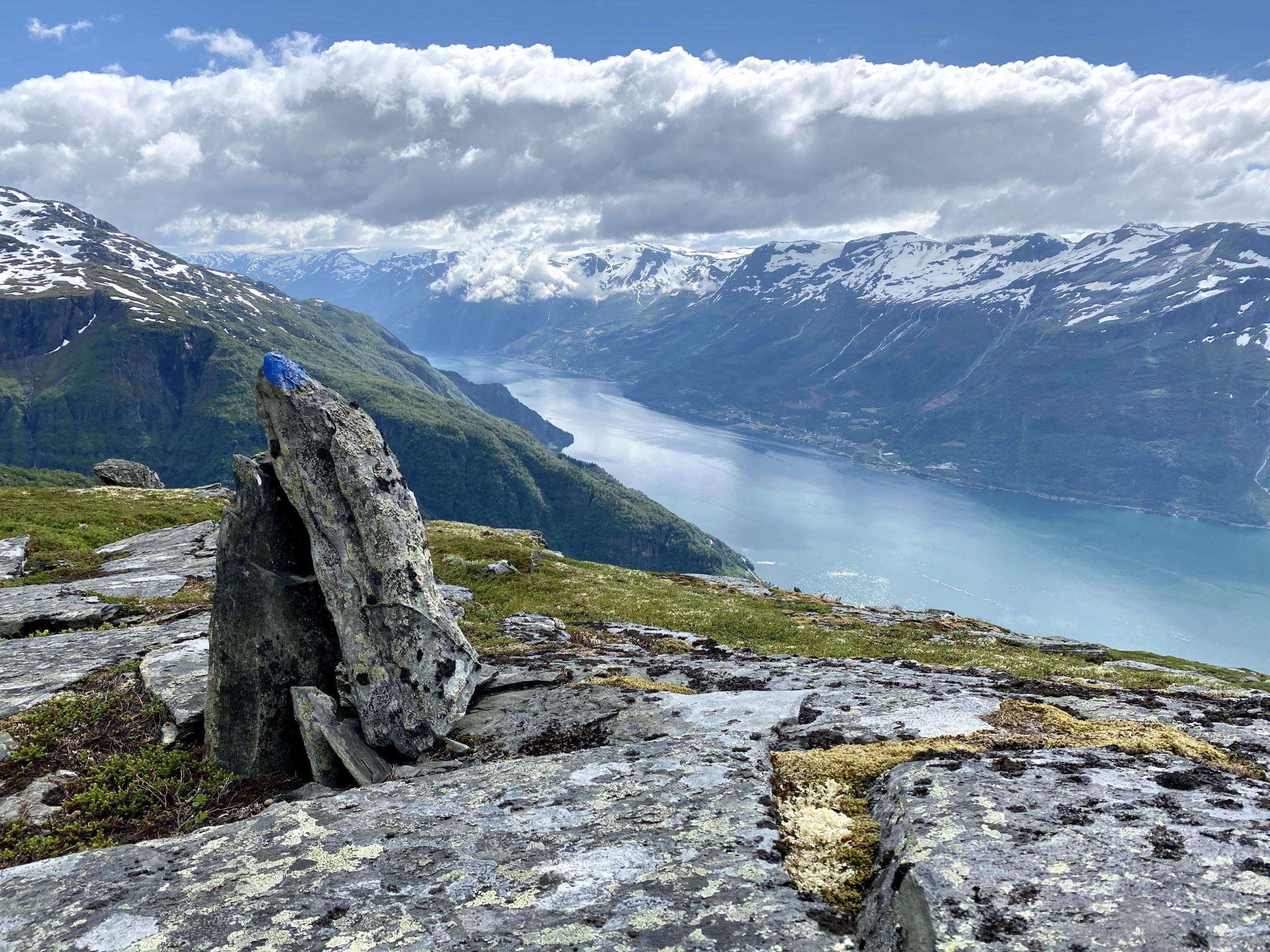 Oversynsbilete frå Dronningstien innover Sørfjorden. Foto: Sigrid D. Dagestad